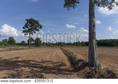 Newly Ploughed Rice Field Ready For Seeding Showing Dryness Of Soil Before Start Of Rainy Season