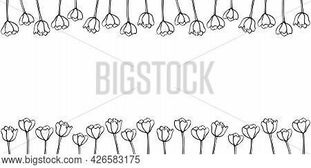 Spring Flowers. Frame From Outline Tulips. Vector Doodle Hand Drawn Isolated. Horizontal Top And Bot