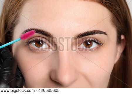 Beautician Brushing Woman's Eyebrows After Tinting, Closeup