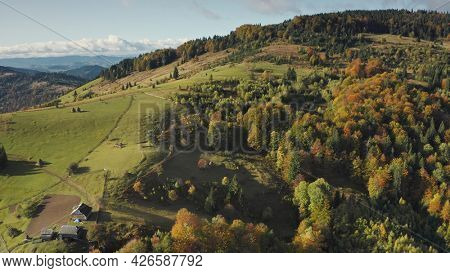 Mountain village at top aerial. Autumn nobody nature landscape. Green trees, grass at cottages with hike ways. Cinematic greenery Carpathians mounts, Ukraine, Europe. Travel and tourism concept