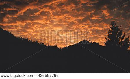 Mountain fir forest silhouette at sunset aerial. Nobody nature landscape at sun set. Twilight cloud sky above mount ridges. village at pine trees. Autumn vacation to Carpathian ranges, Ukraine, Europe