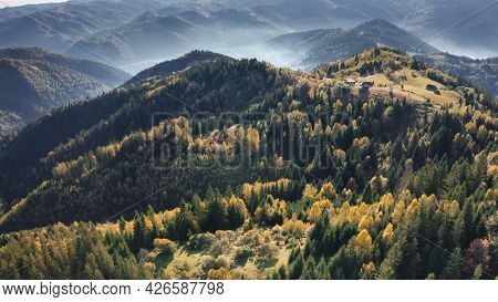Aerial green mountain forest. Nobody nature landscape at mist autumn. Pine trees and greenery grass valley at mount top. Carpathians mountaineering travel, Ukraine, Europe. Cinematic drone shot