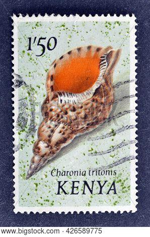 Kenya - Circa 1971 : Cancelled Postage Stamp Printed By Kenya, That Shows Atlantic Trumpet Triton, C