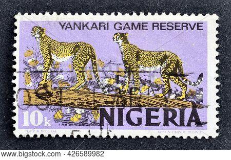 Nigeria - Circa 1973 : Cancelled Postage Stamp Printed By Nigeria, That Shows Cheetahs At Yankari Na