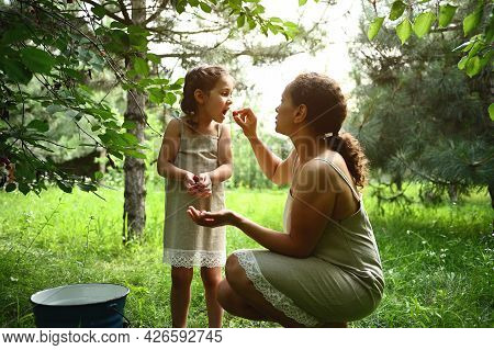 Adorable Mother Feeds Her Daughter With Plucked Cherries In The Garden. Mom And Daughter Dress The S