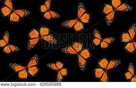Abstract Pattern Of Colorful Monarch Butterflies. Monarch Butterfly Background