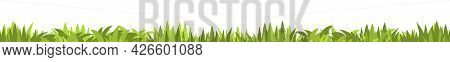 Lawn. Seamless Illustration. Grass Close-up. Green Summer Landscape. Rural Pasture Meadow. Cartoon S