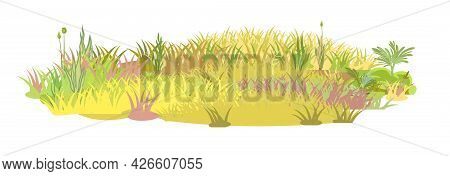 Dense Autumn Meadow. Herbal Yellowing Thickets. Grass Area. Beautiful And Graceful Landscape. Isolat