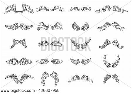 Lineart Isolated Wings Bird Animal Angel Fly Set Design Vector Illustration