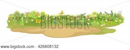 Sandy Glade. Summer Meadow. Green Succulent Grass Close Up. Grassland. Place On The Field. Place For