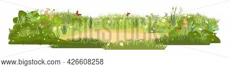 Dense Summer Meadow With Flowers. Butterflies. Grassy Lawn Green Thickets. Grass Area. Playground. P