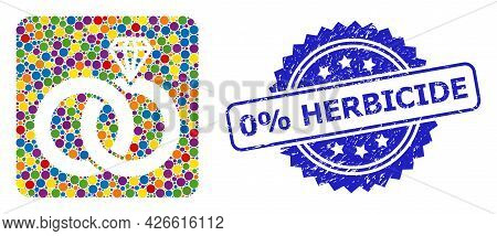 Bright Colored Collage Jewelry Wedding Rings, And 0 Percents Herbicide Grunge Rosette Seal. Blue Sea
