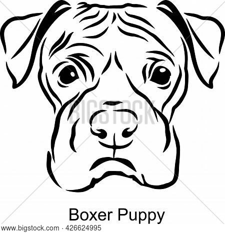 Boxer Puppy Portrait Dog In Line Style - Pet Portrait In Light Style Head Isolated On White