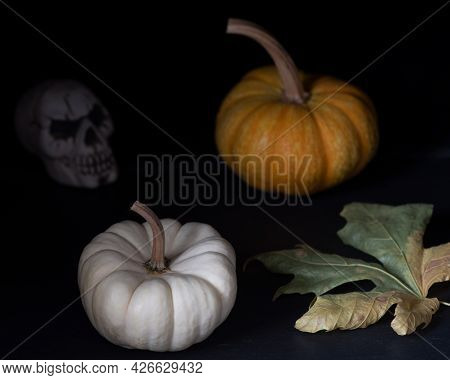 Abstract Still Life Displaying Halloween Composition With Pumpkins, Squash And Skull Against Black B