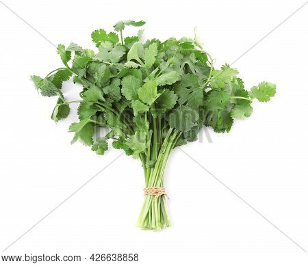 Bunch Of Fresh Green Organic Cilantro Isolated On White, Top View