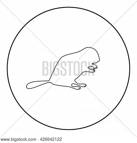 Beaver Animal Rodent Stand Silhouette In Circle Round Black Color Vector Illustration Contour Outlin