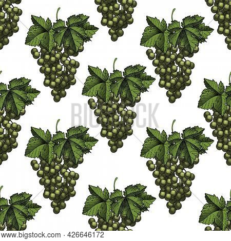 White grapes seamless pattern. A bunch of white grapes with leaves. Vintage engraving color stylized drawing.