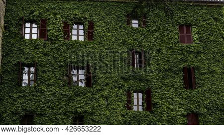 Typical Green Neive House With Red Shutters Overgrown With Green Ivy