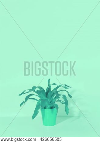 Home Plant In A Ceramic Pot In A Trendy Menthol Tint. Beautiful Background For Your Design.