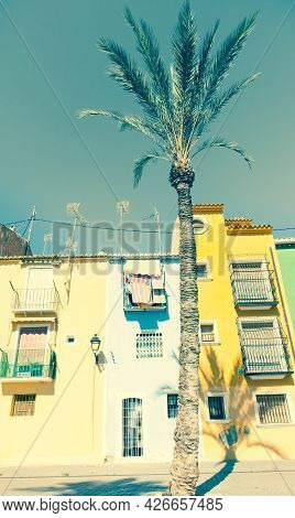 Retro Faded Image Row Of Pastel Colored Terrace Style Traditional Mediterranean Homes With Palm Tree
