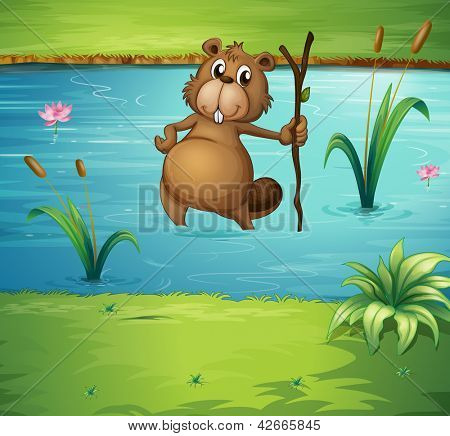 Illustration of a beaver with a wood in the river