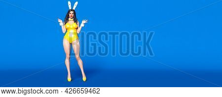 Bunny Girl.rabbit Masquerade.sexy Woman Long Legs.swimsuit Pink Bodysuit Corset And Shoes.pastel Wal