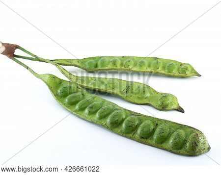 Three Pods Of Twisted Cluster Bean Isolated On White Background, Asian Bitter Green Beans Favorite V