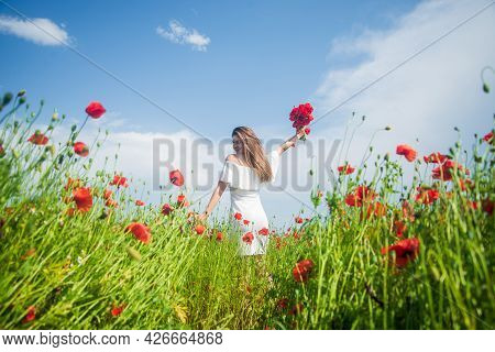 Feeling Herself Carefree. Beautiful Lady Among Poppies. Opium. Happy Girl Gathering Spring Bouquet.