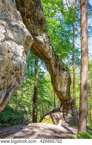 Unique Sandstone Arch In Pine Forest. Bohemian Paradise, Czech Republic