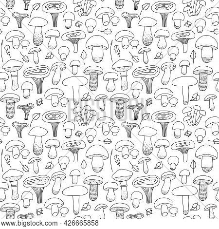 Edible Mushrooms And Leaves Seamless Pattern On An Isolated White Background. Forest, Mushroom Print