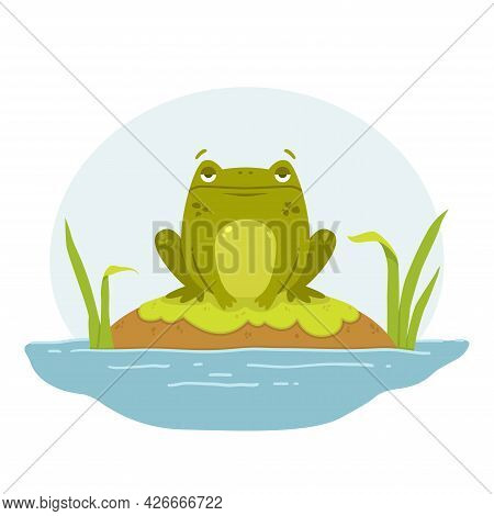 A Frog In A Swamp. Toad Sits On A Rock. Cute Flat Hand Drawn Character. Vector Illustration Isolated