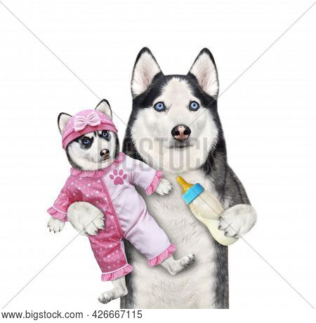 A Dog Husky Holds Its Puppy Dressed In A Pink Bodysuit Baby And Feeds It With Milk. White Background