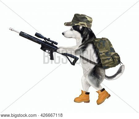 A Dog Husky In Military Uniform Is Walking With An Assault Rifle With Optical Sight. White Backgroun