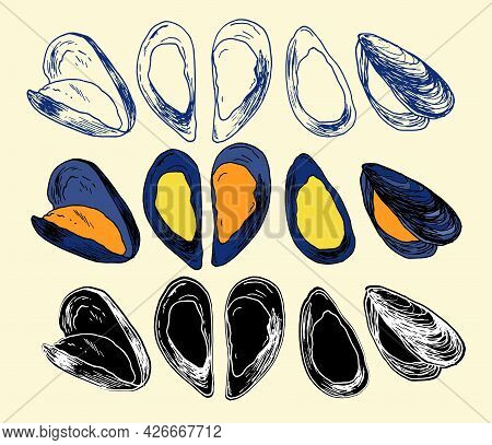 Vector Mussels Of Yellow Color With A Gray Shell. A Hand-drawn Sketch - Style Set Of Sea Food Mussel