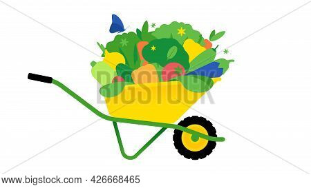Garden Wheelbarrow With Heap Of Vegetables. Composition Of Farmer Products For Layout. Healthy Food