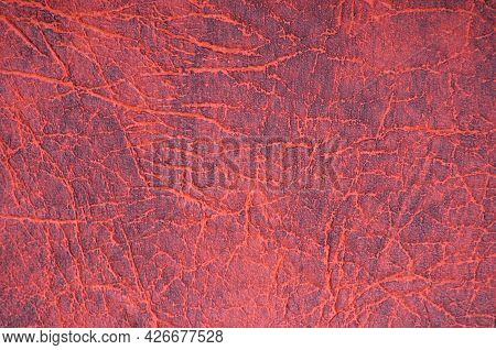 A Fragment Of Natural Leather Of Rough Processing With Large Wrinkles, Artificially Dyed In A Bright