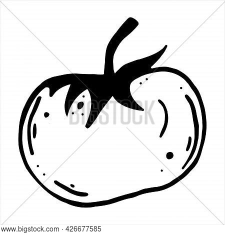 Tomato Vector Icon. Black Outline Of A Garden Vegetable. Isolated Illustration On A White Background