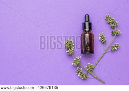 Two Sprigs Of Medicinal Herbs And A Medicine Bottle On A Purple Background. The Concept Of Treatment