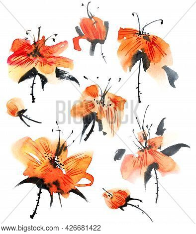 Watercolor And Ink Illustration Of Orange Flowers On White Background. Oriental Traditional Painting