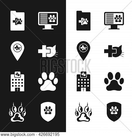 Set Veterinary Clinic, Location Veterinary, Clinical Record Pet, Monitor, Medicine Hospital And Paw