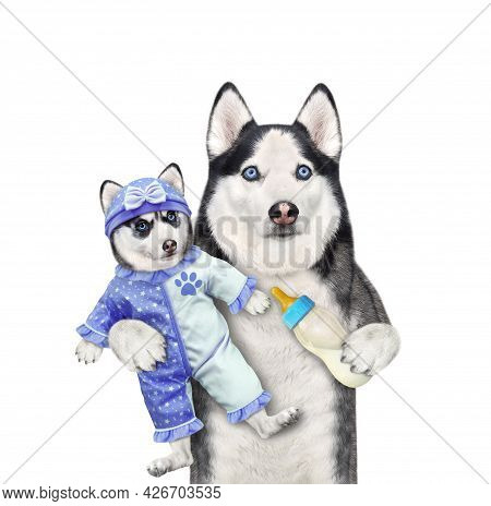 A Dog Husky Holds Its Puppy Dressed In A Blue Bodysuit Baby And Feeds It With Milk. White Background