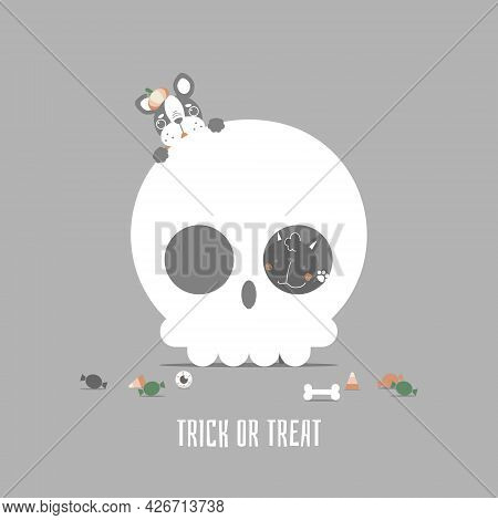 Happy Halloween Holiday Festival With Cute Cat And French Bulldog Pug And Skull, Flat Vector Illustr
