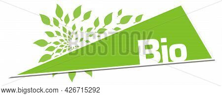 Bio Text Alphabets With Leaves Written Over Green Background.