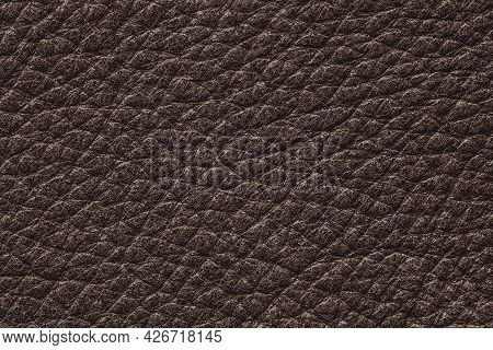 Dark Brown Color Genuine Cow Hide Leather. Texture Close-up. Fashionable Background, Copy Space