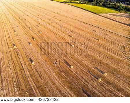 Aerial Drone Top Scenic Sunset View Of Many Rolled Hay Bales On Harvested Golden Wheat Field At Coun