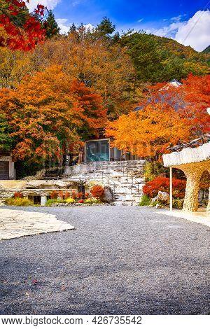 Japan Travel Ideas. Tradtional Japanese Garden With Seasonal Red Maple Trees Near Lake Kawaguchiko A