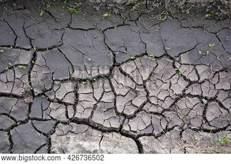 Dry Earth, Cracks In The Ground, Drought