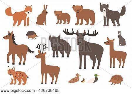 Set Of Cute Forest Animals. Cartoon Isolated Vector Fox, Wolf, Bear, Bear Cub, Elk, Deer, Fallow Dee