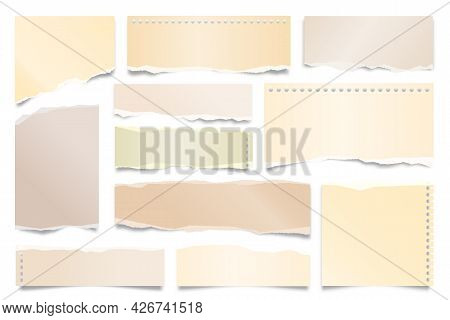 Colorful Ripped Paper Strips Isolated On White Background. Realistic Paper Scraps With Torn Edges. S