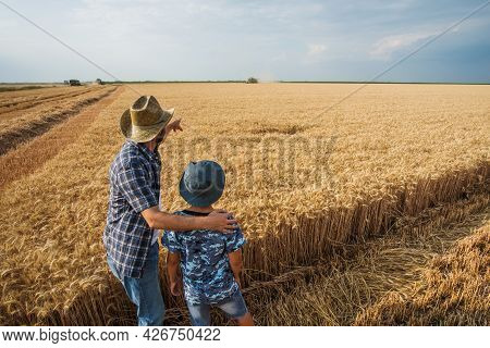 Farmers Are Standing In Their Wheat Field While The Harvesting Is Taking Place. Father Is Teaching H